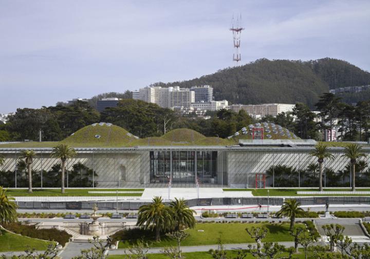 カリフォルニア·アカデミー·オブ·サイエンス - 緑 - 屋根5