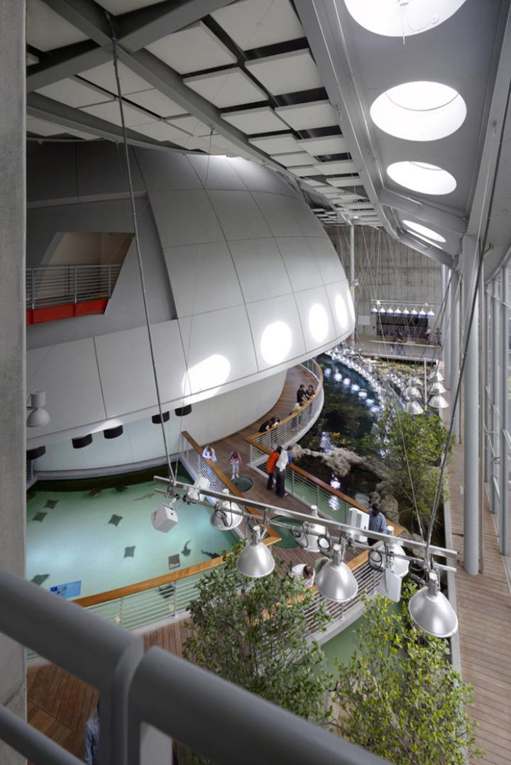 カリフォルニア·アカデミー·オブ·サイエンス - 緑 - 屋根8