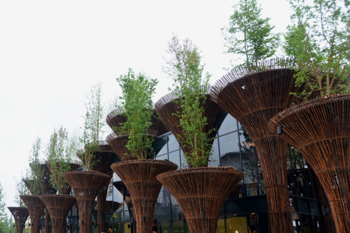 milan expo pavilion vietnam trong nghia vo 2015 02