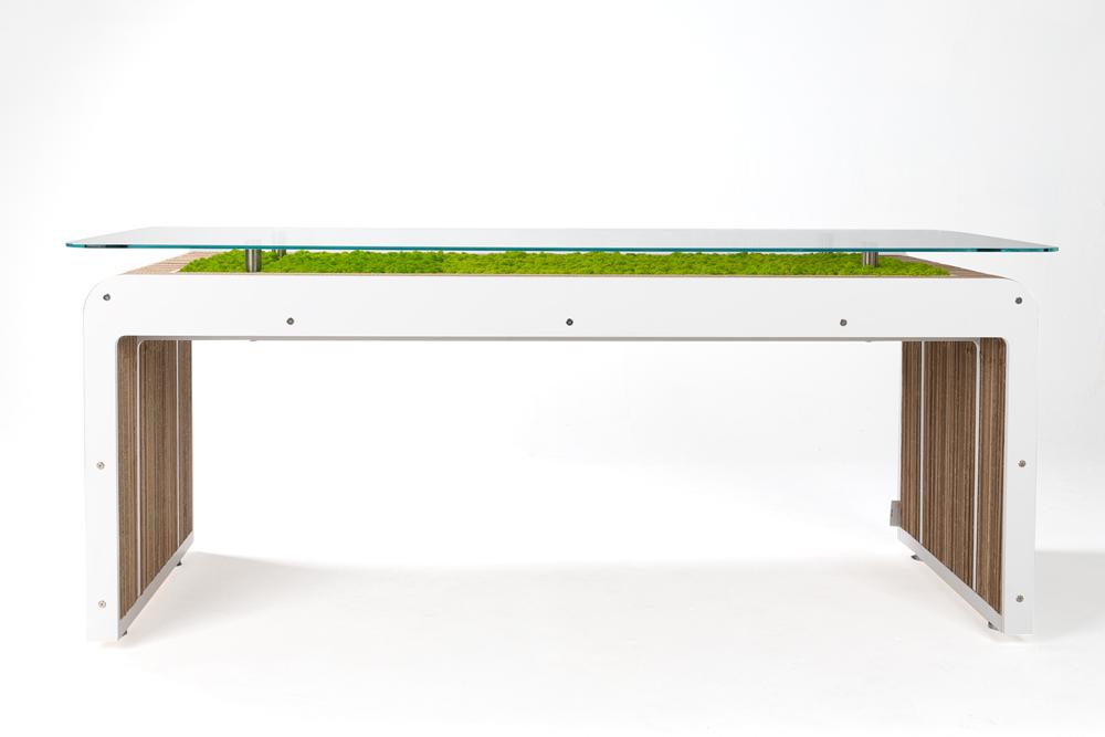 Más Desk Plus vivir con líquenes